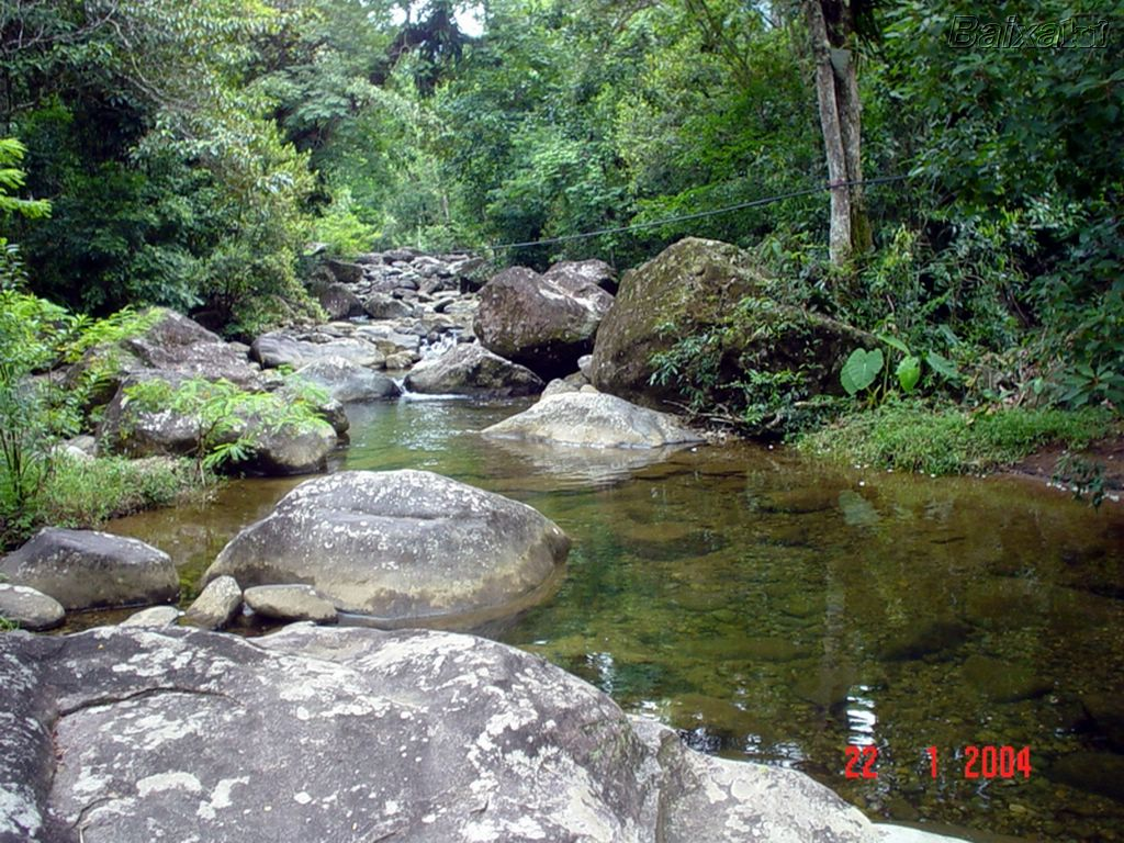BXK13401_reserva-ecologica-da-jureira-peruibe800